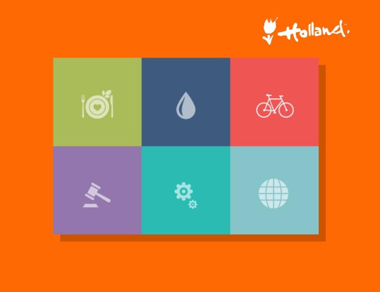 portfolio - NL in US color palette